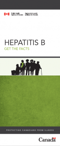 Hepatitis B: Get the facts. | Hépatite B : informez-vous. Image