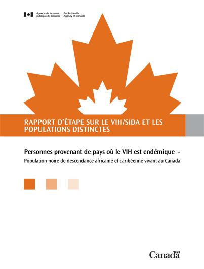 Rapport d'étape sur le VIH/sida et les populations distinctes : Personnes provenant de pays où le VIH est endémique – Population noire de descendance africaine et caribéenne vivant au Canada Image